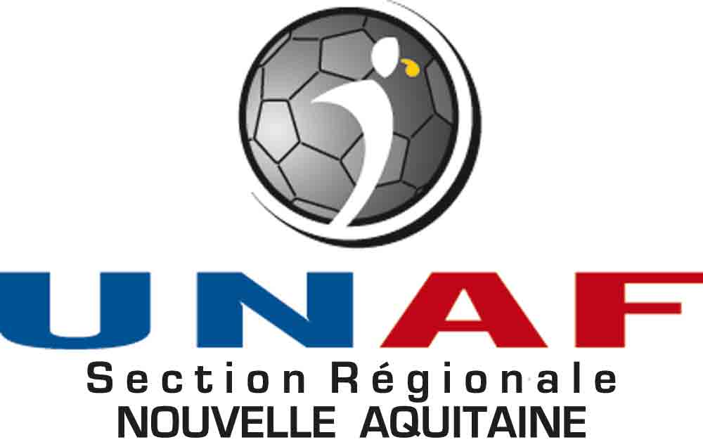 logo web section regionale